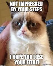 grumpy cat fitbit