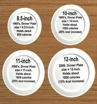 plates_over_the_years